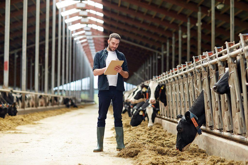 """Hayvancılığa ilişkin """"Acil Önlemler Paketi"""" gündemde!"""