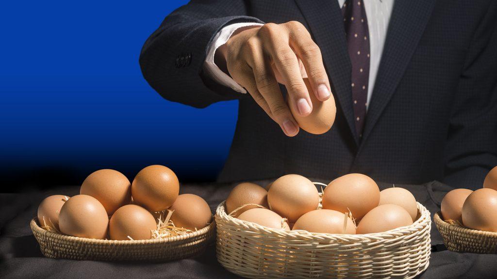 Verilere göre, tavuk ve yumurta ihracatı 1 milyar dolara yaklaştı