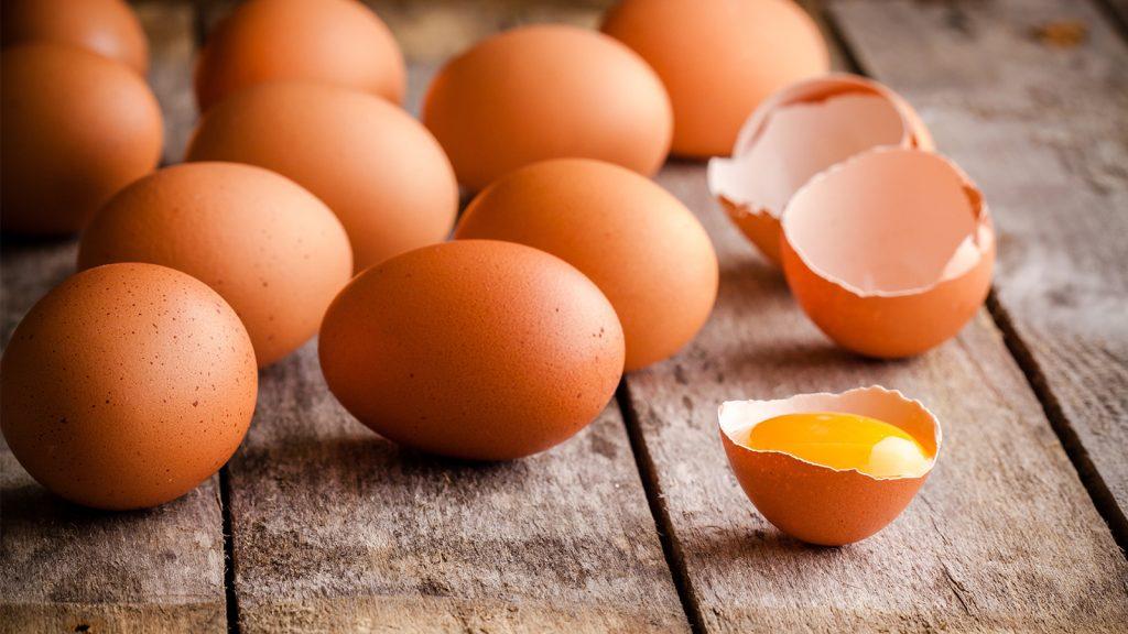 4. Yumurta Zirvesi hazırlıkları sürüyor
