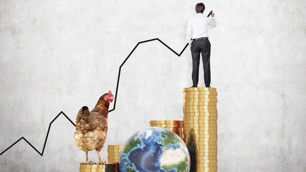 Rabobank raporu, küresel kanatlı eti fiyatlarında artışa işaret ediyor