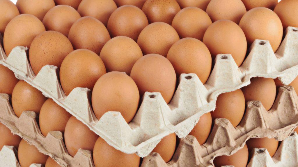 Yumurtaların paketlemesinde alternatif çözümler
