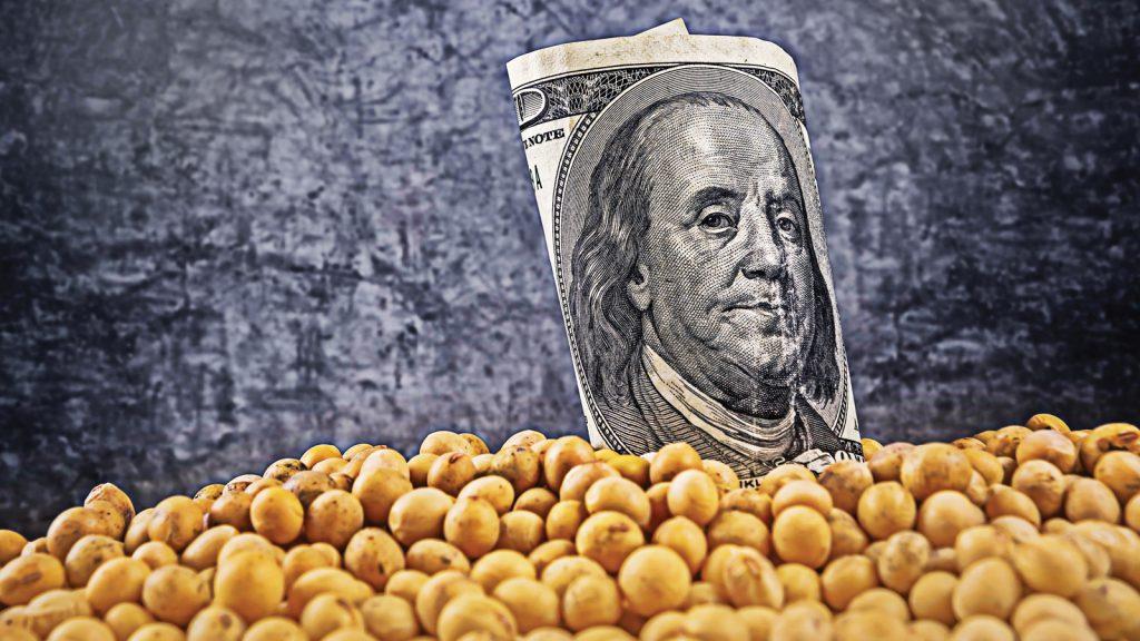 AB, Amerika Birleşik Devletleri'nden soya fasulyesi ithalatını artırdı