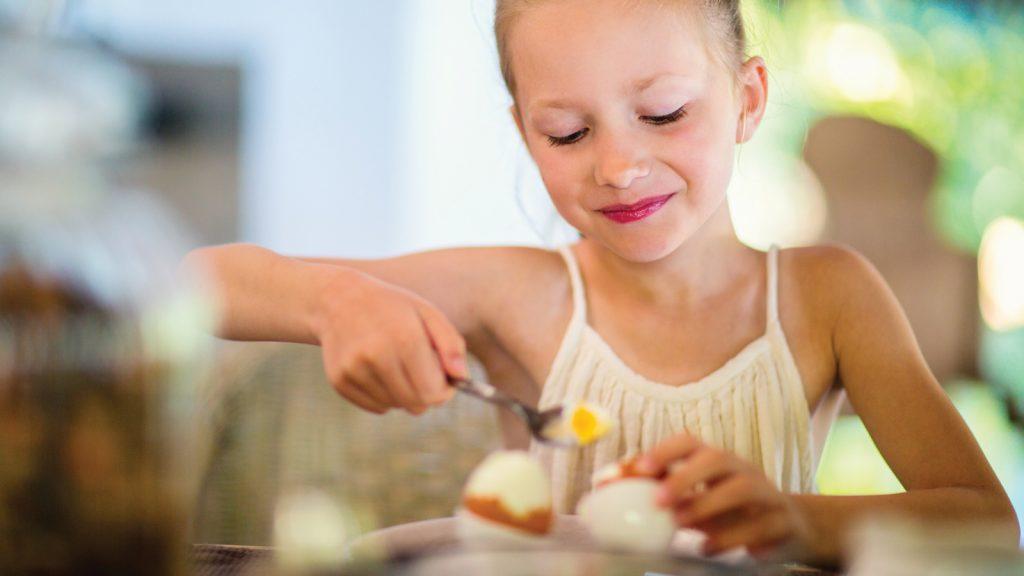 Yumurta sektörü zirveye hazırlanıyor