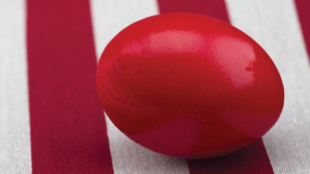 Türk yumurtası ABD yolcusu!