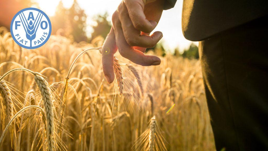 Ulusal E-Tarım Stratejisinin Desteklenmesi Projesi hayata geçirildi