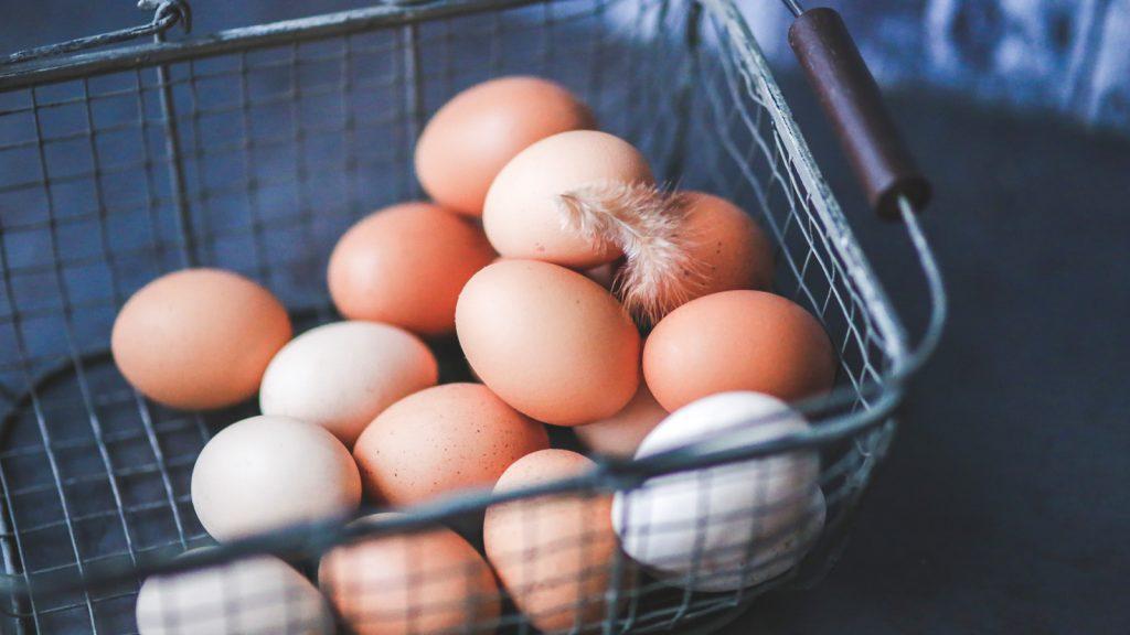 Yumurta üretiminde artış şekillendi