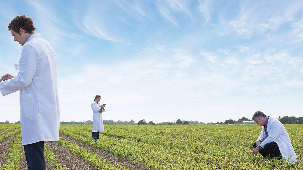 Mikotoksin kontaminasyonu  hafife mi alınıyor?