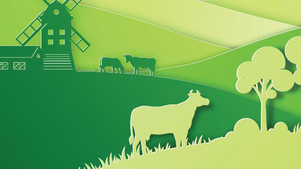 Karbon nötr üretime bir adım daha yakınız