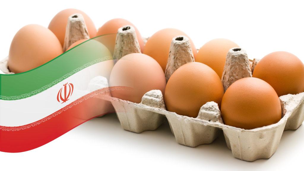 Yumurta ihracat sevkiyatı için İran kapısı açıldı