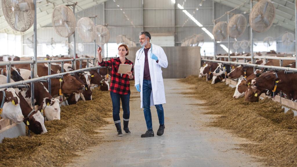 Çiftlik körlüğü nasıl önlenebilir?