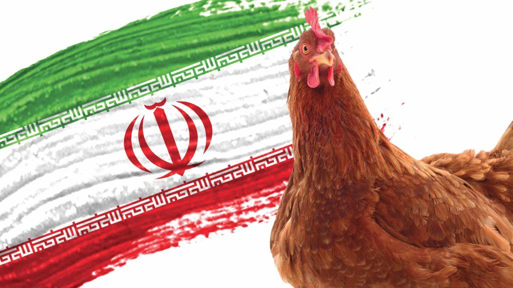 İran, tavuk ihracatını önlem olarak yasakladı