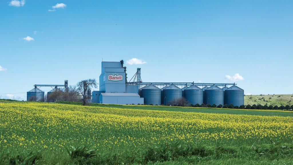 Banvit BRF, üretiminin % 100'ünü tüketime sunuyor