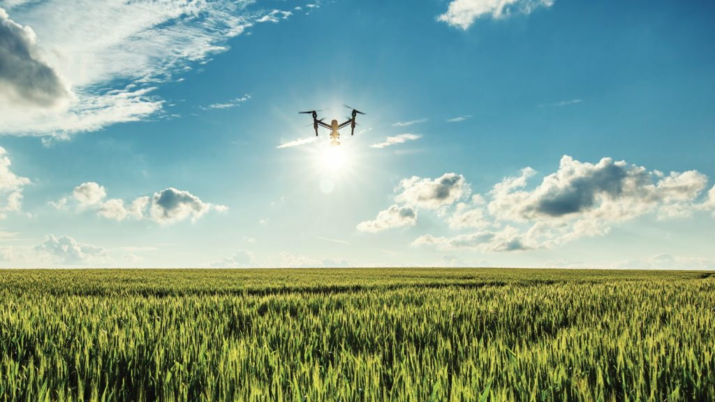 İsrail küresel tarım teknolojilerine nasıl öncülük ediyor?